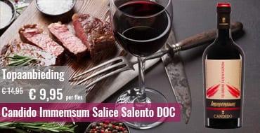 Candido Immemsum Salice Salento DOC topaanbieding 2