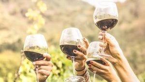 De trend van nu alcoholvrije wijn | Wijnspecialist