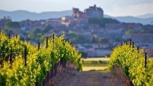 Wijn van de maand april | Wijnspecialist