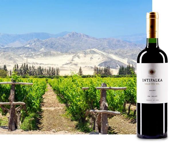 Intipalka Valle del Sol Malbec   Wijnspecialist