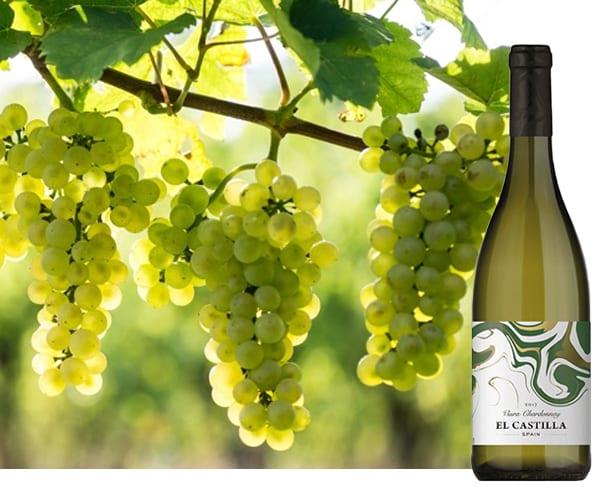 El Castilla Viura Chardonnay | Wijnspecialist